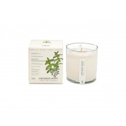 Candle Crushed Mint (60 h) by Kobo