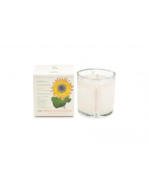 Candle Sweet Sunflower (60 h)