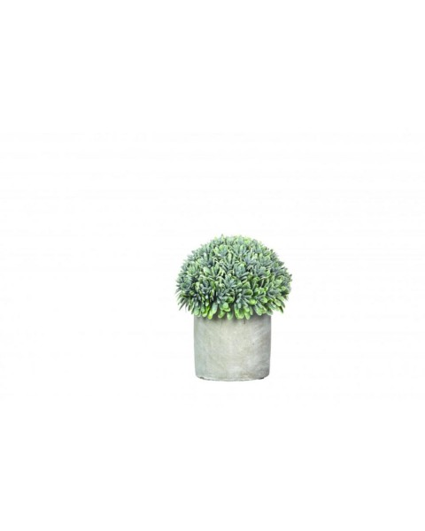 Artificial boxwood potted GARRIGUE (Ø 12 cm) by Pomax