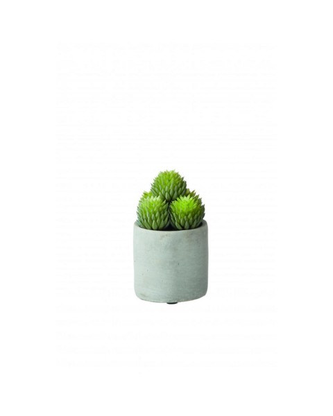 Artificial plant potted (Ø 11 cm) by Pomax