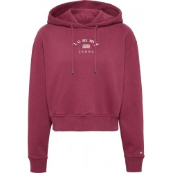 Embroidered logo cropped hoody by Tommy Jeans